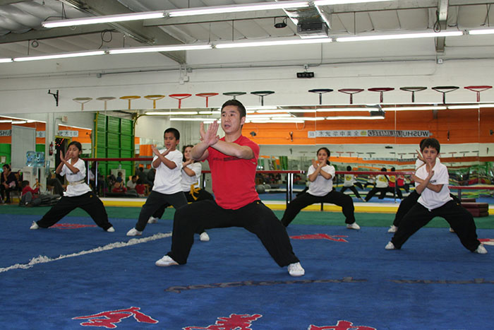 Arcadia Martial Arts Gallery